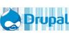 drupal asesoria seleccion ingenieria tecnologia informatica