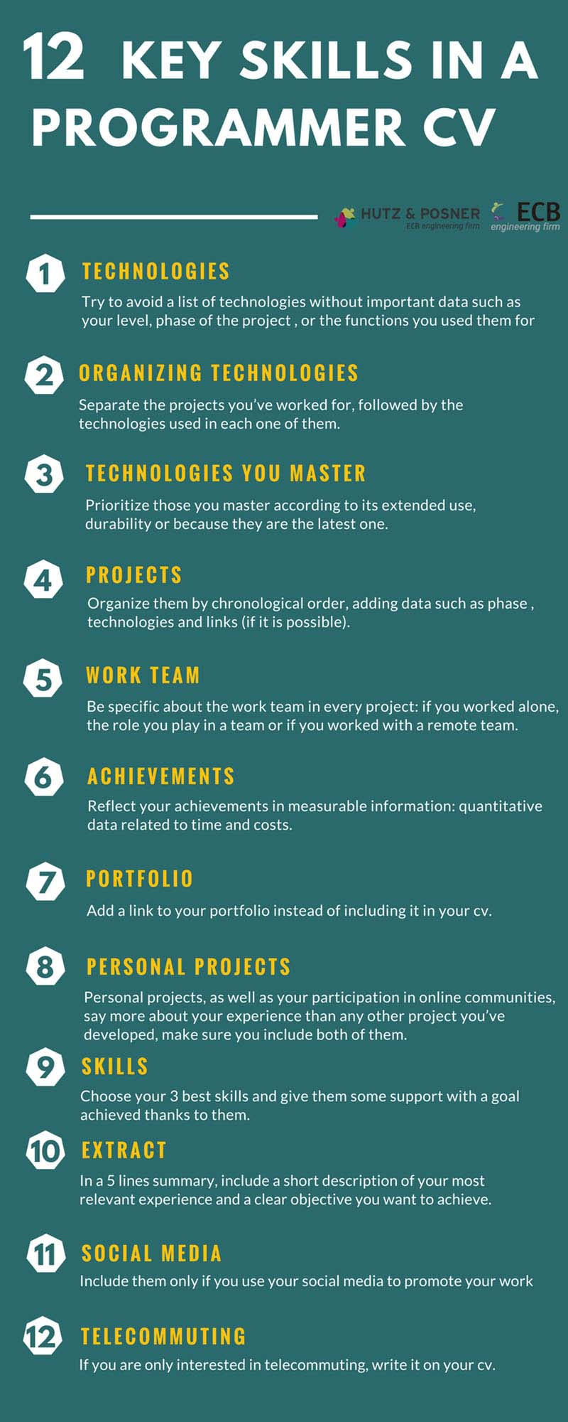 Infographic 12 Key skills in a programmer cv
